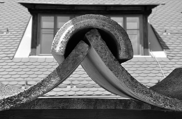 Roof detail 01