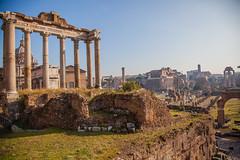Morning at the Roman Forum