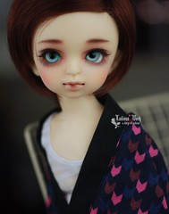 Puff[Volks]belong to Pan