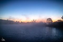 Moossee Sunrise Selection