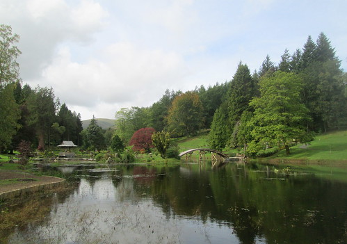 Pond and Bridge