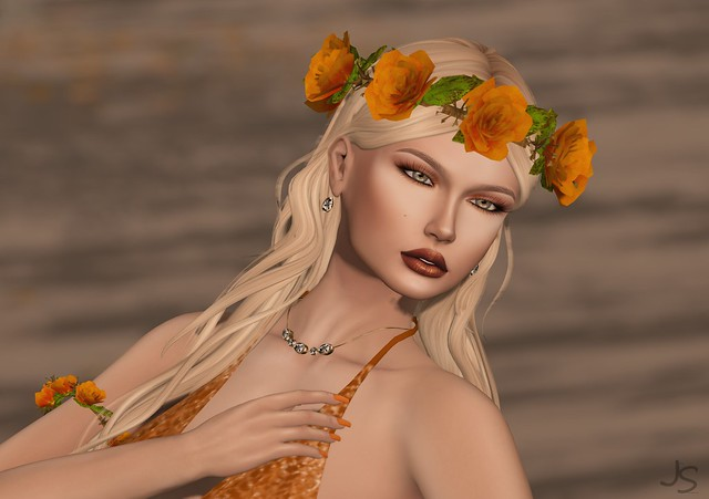 Fall Color Beauty