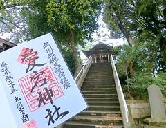 #岩槻愛宕神社 久伊豆神社いくと、流れとして参拝することになるので #愛宕神社 も立ち寄っていきます。 ・ この日は神職さんが車🚗から荷下ろししていたので、すぐに御朱印いただくことができました😊。 ・ ひな祭りになると、この階段に雛人形がズラリと並ぶんですが、普段の日はちょっと薄暗いのが残念。 階段を上り下りキツイ方は左手の拝殿で…と地元の方々のための配慮までできてる神社です。 こちらも2度目でした。 _______ #埼玉県 #さいたま市岩槻区本町 #愛宕 #愛宕神社 # #