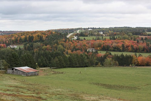 brookvale pei canada fall foliage leaves rural country barn hills countryside