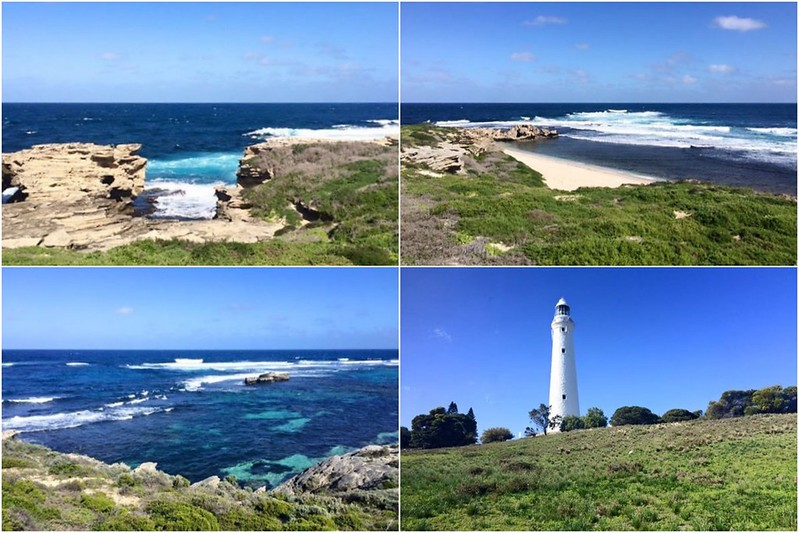 collage rottnest