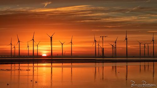 Krammer Windpark at Sunrise