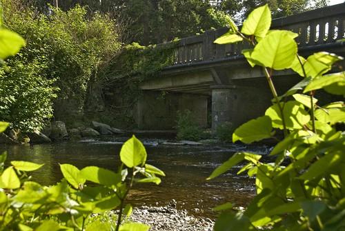 31051821 Newrath Bridge-Wicklow