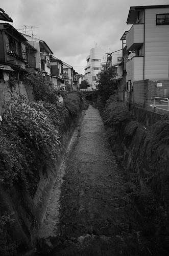 Kyoto monochrome 8