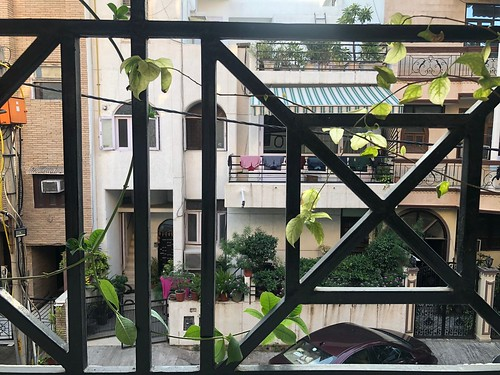 Home Sweet Home - A Lady's Balcony, South Delhi