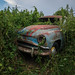 Abondoned car by the_bestiole