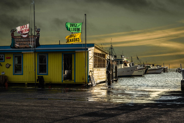 Fulton Harbor Bait Stand