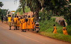 2018 Uganda,on the way to  Mabira Forest