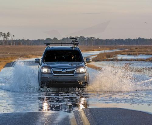 Flood Fun