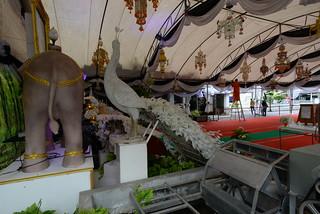 S end of Nbound elephant Wat Pho BKK 6-5-17