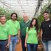 Greenhouse TOMATO Crop - KEYS MY CROPS in Greece (Peloponnese) -  June 2018