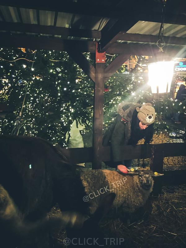 · Establo navideño ·