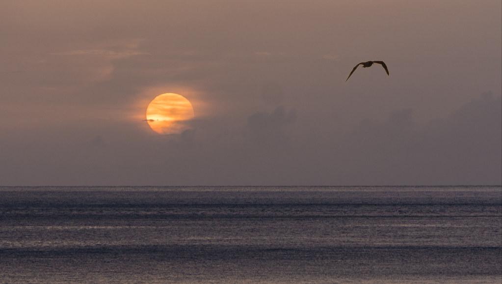 Soleil voilé, ciel violet... + recadrage. 30952691918_e046dc469b_b
