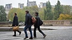 Pedestrian Paris (3)
