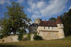 Château de Rupt sur Sâone