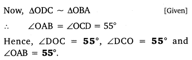 NCERT Solutions for Class 10 Maths Chapter 6 Triangles 27