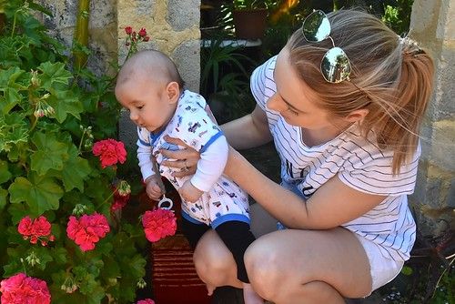 Our grandson Ethan enjoyed our geraniums with his mum 7 October 2018