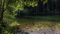 2018 09 29 Lac de la Maix-752403 - Photo of Grandfontaine