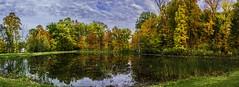 Concord Woods_20181030_03