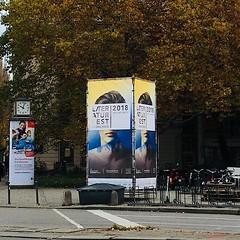 Schon gesehen? München schmückt sich! #litmuc18 #bookfaces #munich #vorfreude literature #bookstagram #booklover #bücherwurm #bücherliebe #bücher #buch #literatur #literature #instareads #münchen #munich #literaturhausmünchen #flowers #bavaria #readgood #