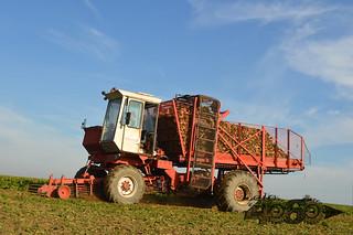 Dewulf R6000-078