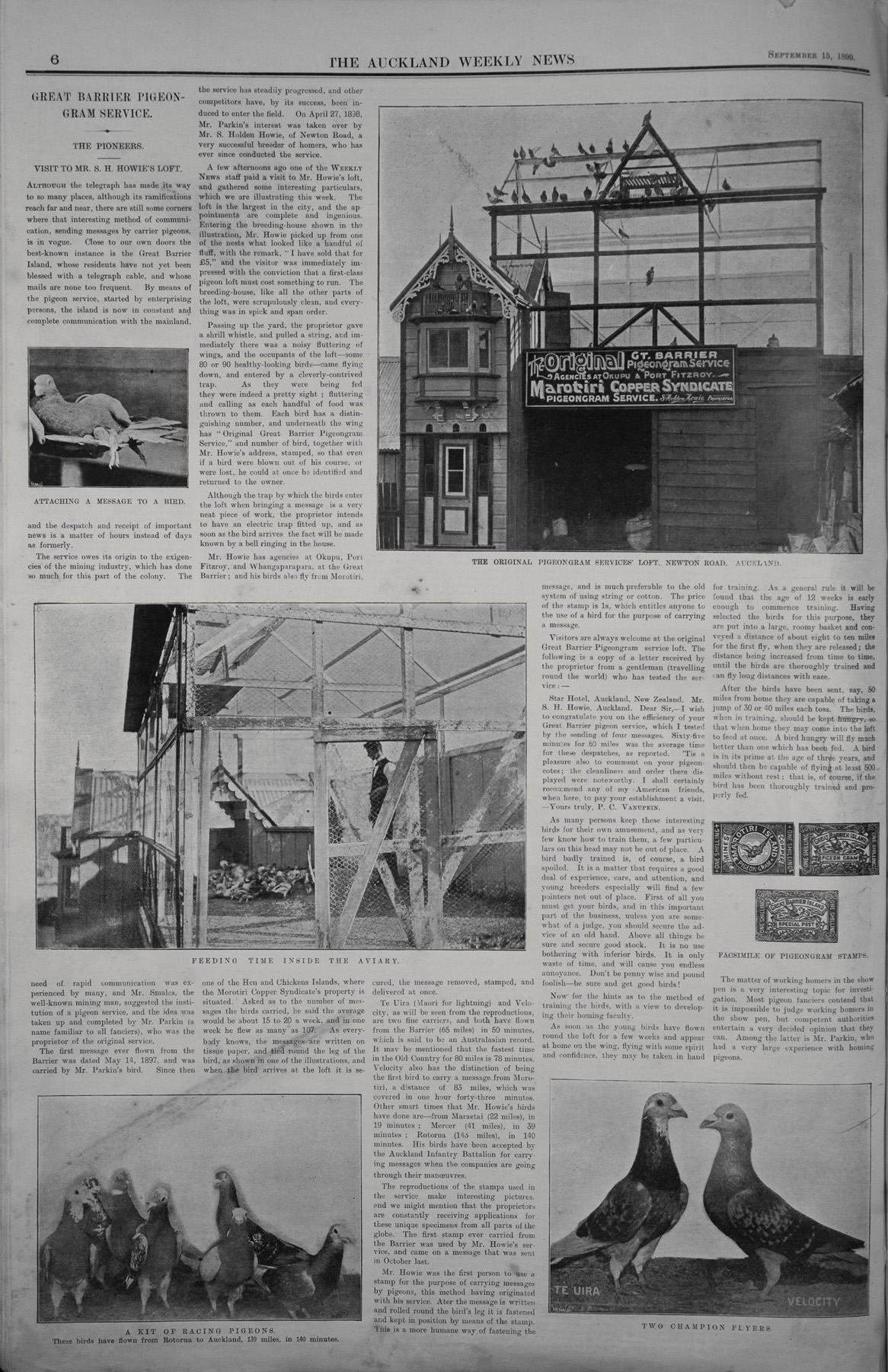 An account of the Auckland-Great Barrier Island Pigeon Post service as published in the September 13, 1899, edition of The Auckland Weekly News. Sir George Grey Special Collections, Auckland Libraries, AWNS-18990915-6-4