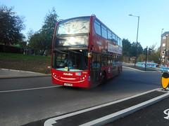 route w8