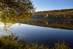Reflet d'automne - Photo of Zinswiller