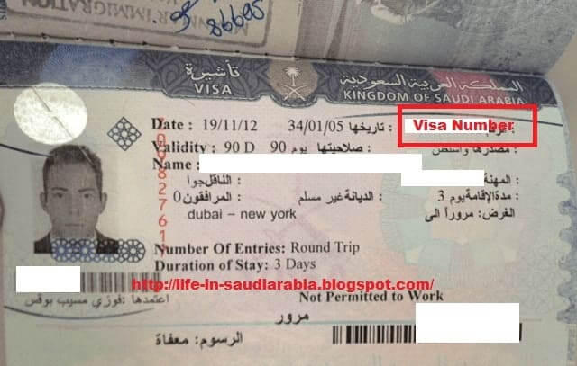 955 Guideline to Fill Online Application for Family Visit Visa in Saudi Arabia 03