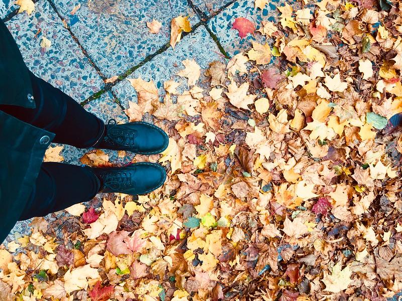 Syksy lehdet