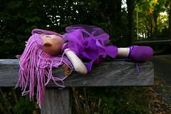 Verloren Doornroosje Foto van de maand bij fotoclub Lunetten.