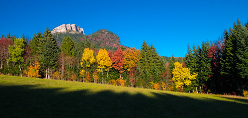 Autumn in Chartreuse