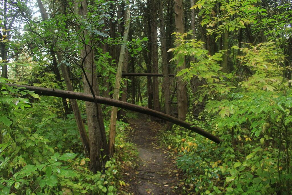 Seaton Trail