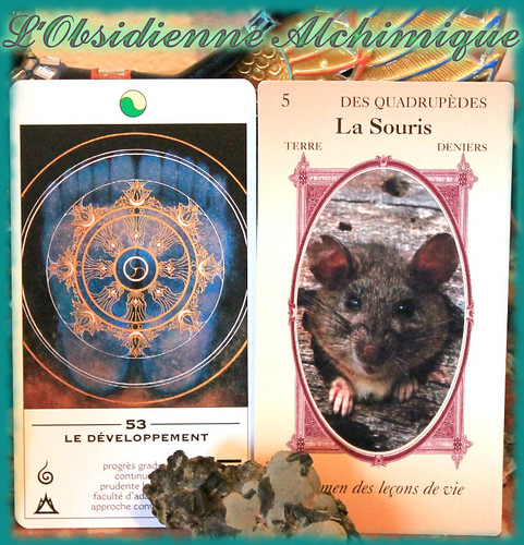 Tirage de carte sur Gien par l'Obsidienne alchimique