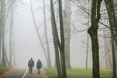Foggy morning | Kaunas, Lithuania