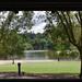 The Eco-Lake, Singapore Botanic Gardens