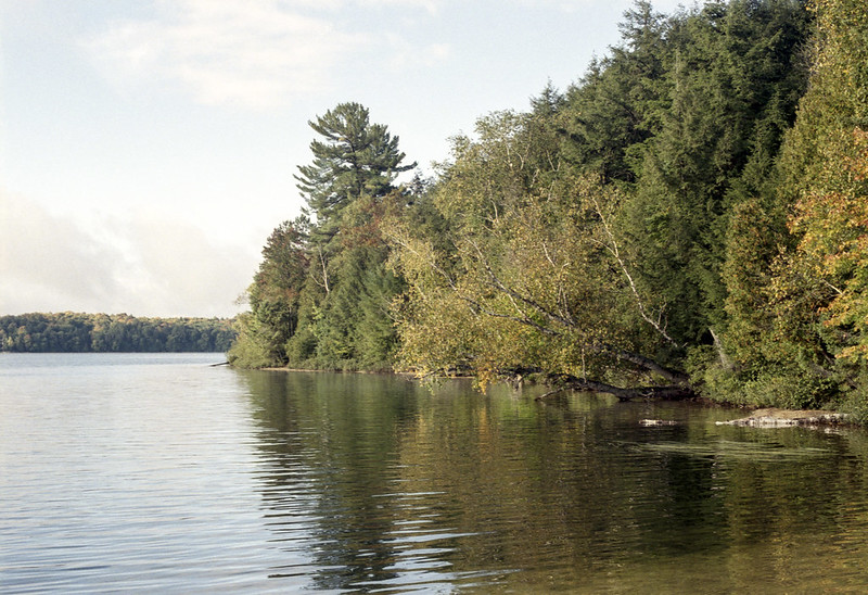 Bella Lake Shoreline