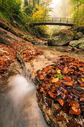 Autumncreek