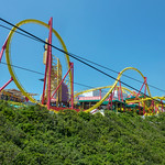 Primary photo for Day 18 - Ocean Park and Hong Kong Sightseeing