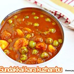 Sundakkai Kara kuzhambu