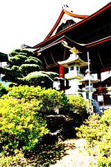at Zenkō-ji 083
