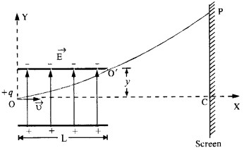 NCERT Solutions for Class 12 physics Chapter 1.38