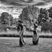 Savill Gardens Autumn Sculpture Trail 2018-2.jpg by John Wright8