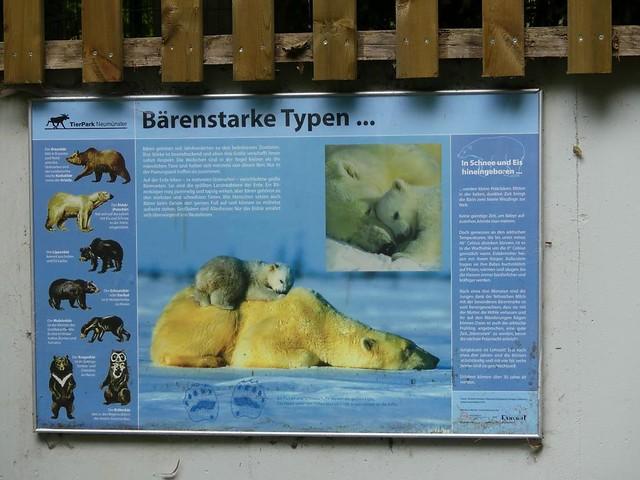 Eisbäranlage, Tierpark Neumünster