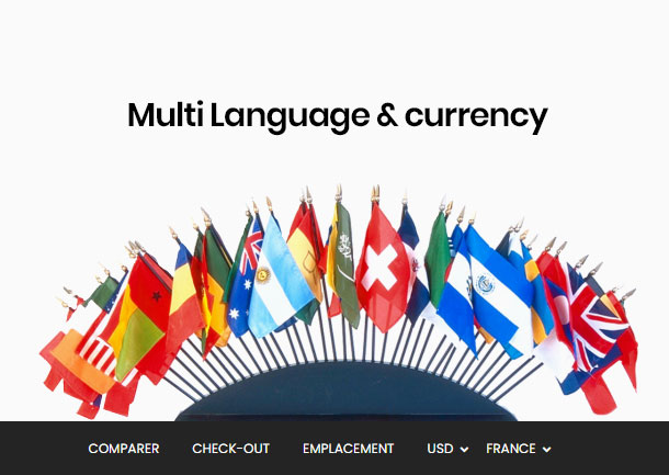 best shopify themeforest - multiple language and multi-currency