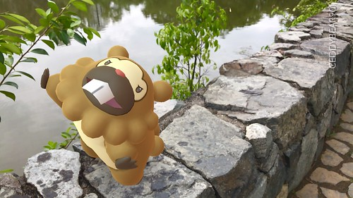 399 Bidoof (position=left)
